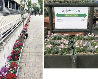 東戸塚駅西口の駐輪場脇に設置されているプランター(左)と戸塚駅西口に置かれたデッキ