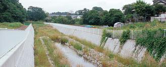 和泉川。新幹線下の改修区間(泉区・和泉三家橋から撮影)