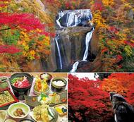 「古刹」と「名瀑」の紅葉を楽しむ