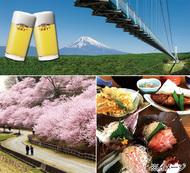 アサヒビール工場見学と早咲き桜「春めき桜」鑑賞の旅