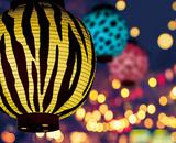 開園20周年記念ズーラシア夜市