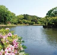 新緑を満喫こども自然公園