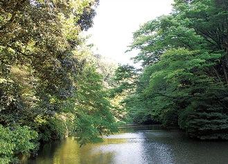 栄区にある瀬上市民の森