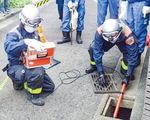 排水溝を調査する=区提供(14日)