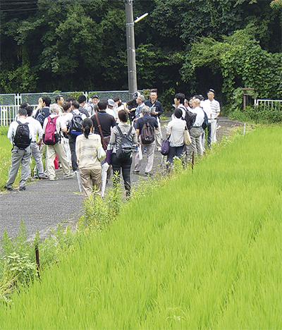 舞岡の農地市民が調査