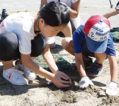 子どもの遊び場を芝生化