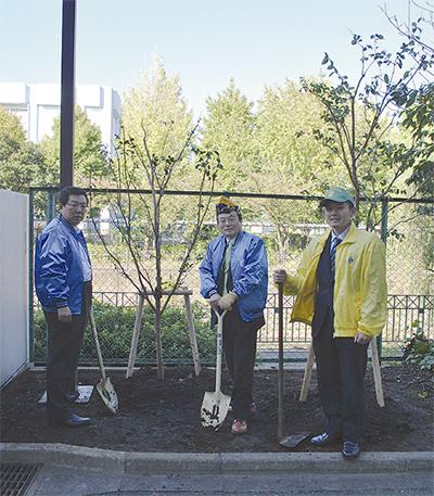百日紅2本を植樹