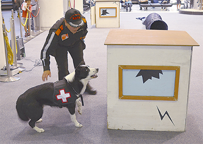 災害救助犬への理解を
