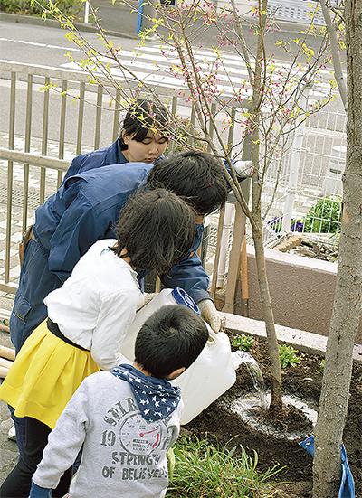 周年記念で桜を寄贈