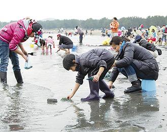 多くの潮干狩り客で賑わう海の公園(3月24日撮影)