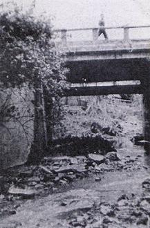旧富岡川の様子