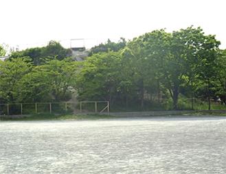 野島公園(室ノ木地区)ジープ山