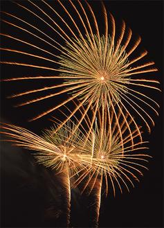 夜空を彩る花火(写真は昨年、安藤将大さん撮影)