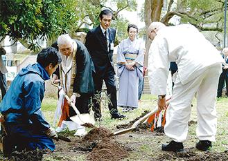 イトスギを植樹する参加者