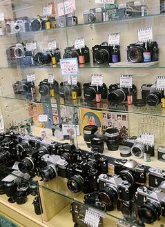 同店では多くのフィルムカメラを販売している