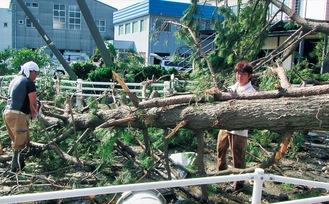 台風15号時の実際の様子