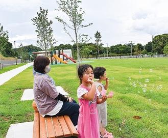 芝生の草地広場が広がる公園に