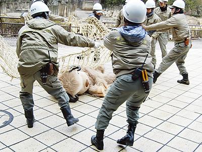 地震で動物が脱走!?