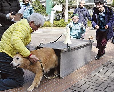 18匹の犬が避難訓練