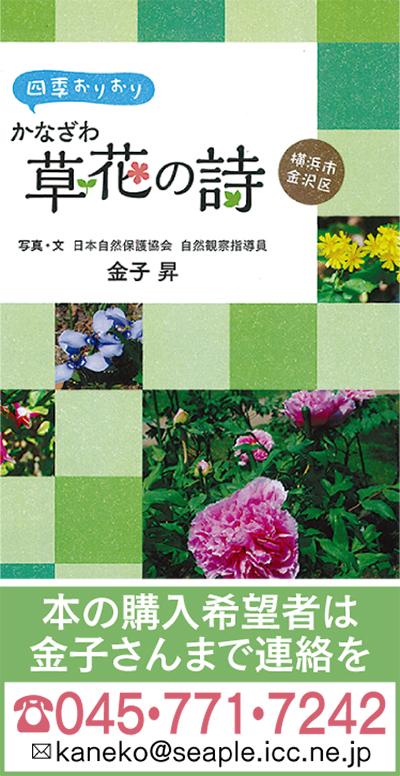 金子さんの「草花の詩」