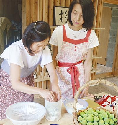 杉田梅学ぶジュース作り