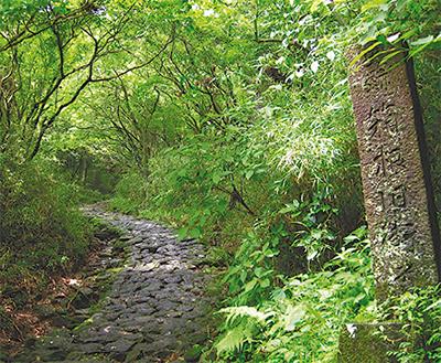江戸時代の東海道を歩く