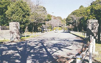 富岡に残る戦跡