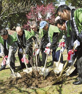 公園内に梅の木を植樹する関係者ら