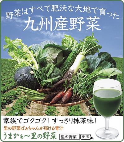 九州産野菜15種が青汁に