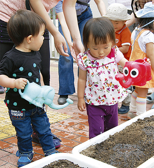 まいた種に水を与える子どもたち