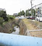 武者ケ谷橋周辺もすっきり