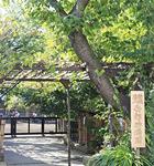 木々の緑が豊かな同園の正門(上)。