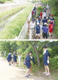 川沿いをみんなで清掃(上)。草刈りをする中学生