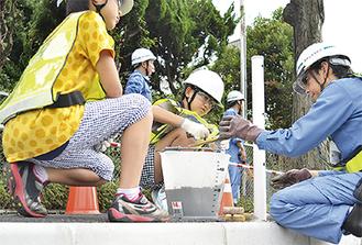 横断防止策の支柱を支えるため、自分たちで練り混ぜたコンクリートを流し込む子どもたち(17日、港南土木事務所前の歩道)