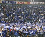 日本シリーズのパブリックビューイングでも盛り上がりをみせた横浜スタジアム(写真は第6戦)