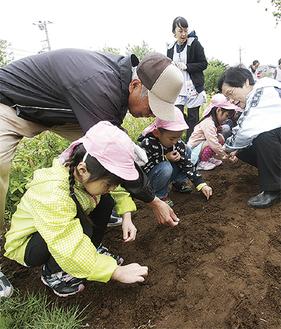 住民と共に種をまく園児たち