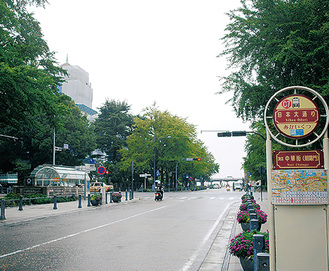 日本大通り