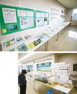 ㊤ズラリと展示された「いたちかわらばん」㊨記念展示会の一環として飯島小学校の子どもたちが生き物を展示