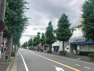 丸山台地区の街並み(いちょう坂商店街)