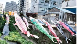 大岡川を泳ぐこいのぼり=4月24日撮影