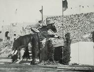 「馬と五輪」の特別展