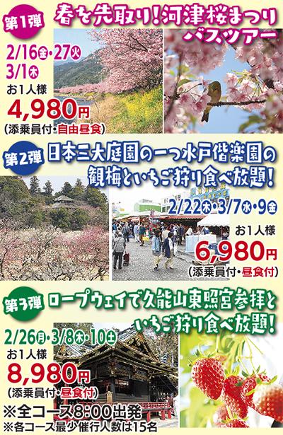 春を先取り河津桜と伊豆周遊の旅