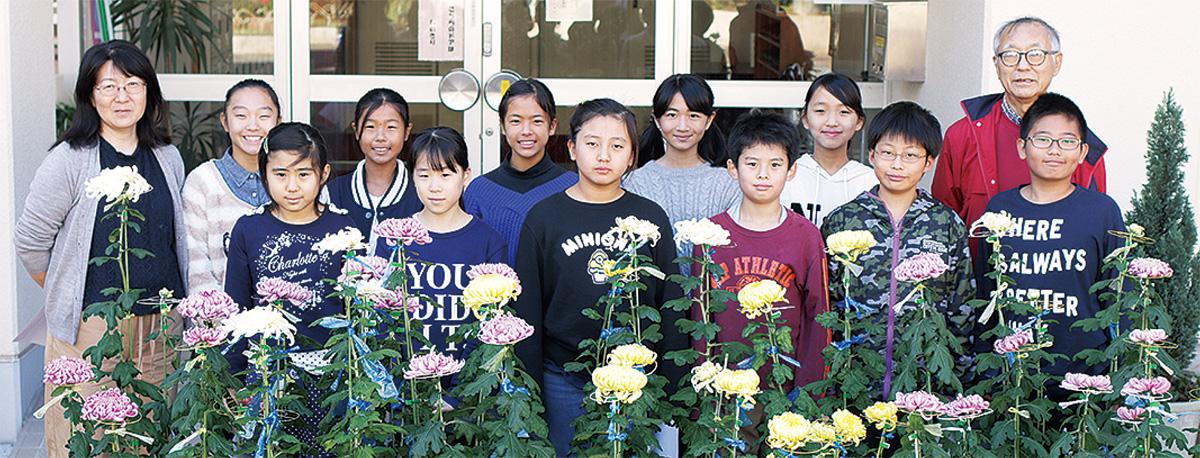環境委員の児童が菊花展