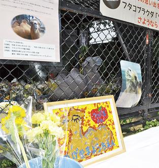 ツガルへの贈り物が飾られている展示場