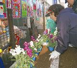 プランターに花を植える住民