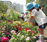 花に水やりをする園児ら