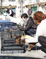 ペット同行で避難訓練