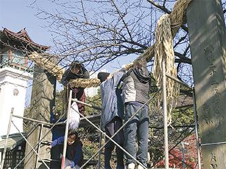 しめ柱に飾り付けられる大しめ縄=2日、同神宮提供