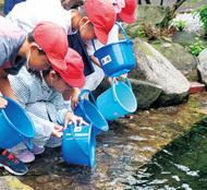 小学生、処理水に鮎放流
