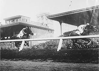戦前の根岸競馬場。馬見所にはたくさんの人(横浜都市発展記念館所蔵)